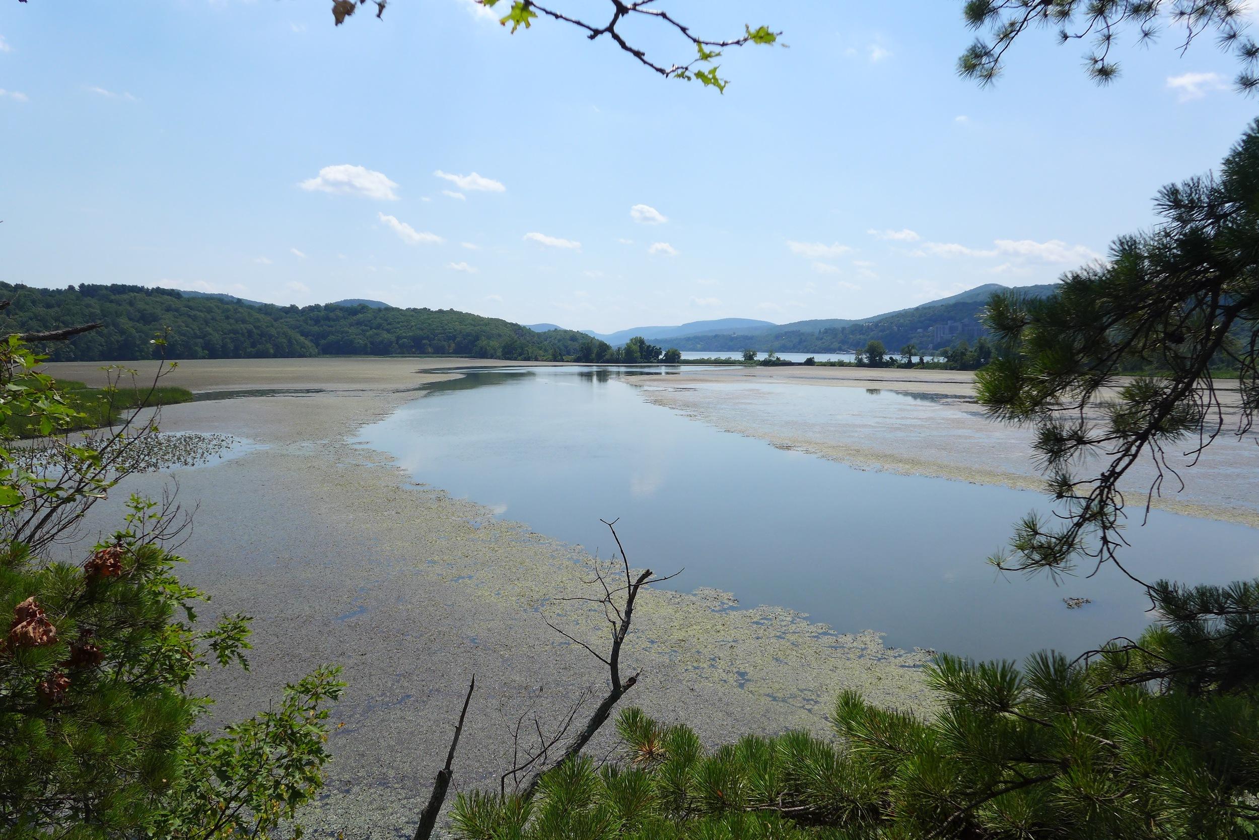 audubon-marsh-garrison-south.jpg