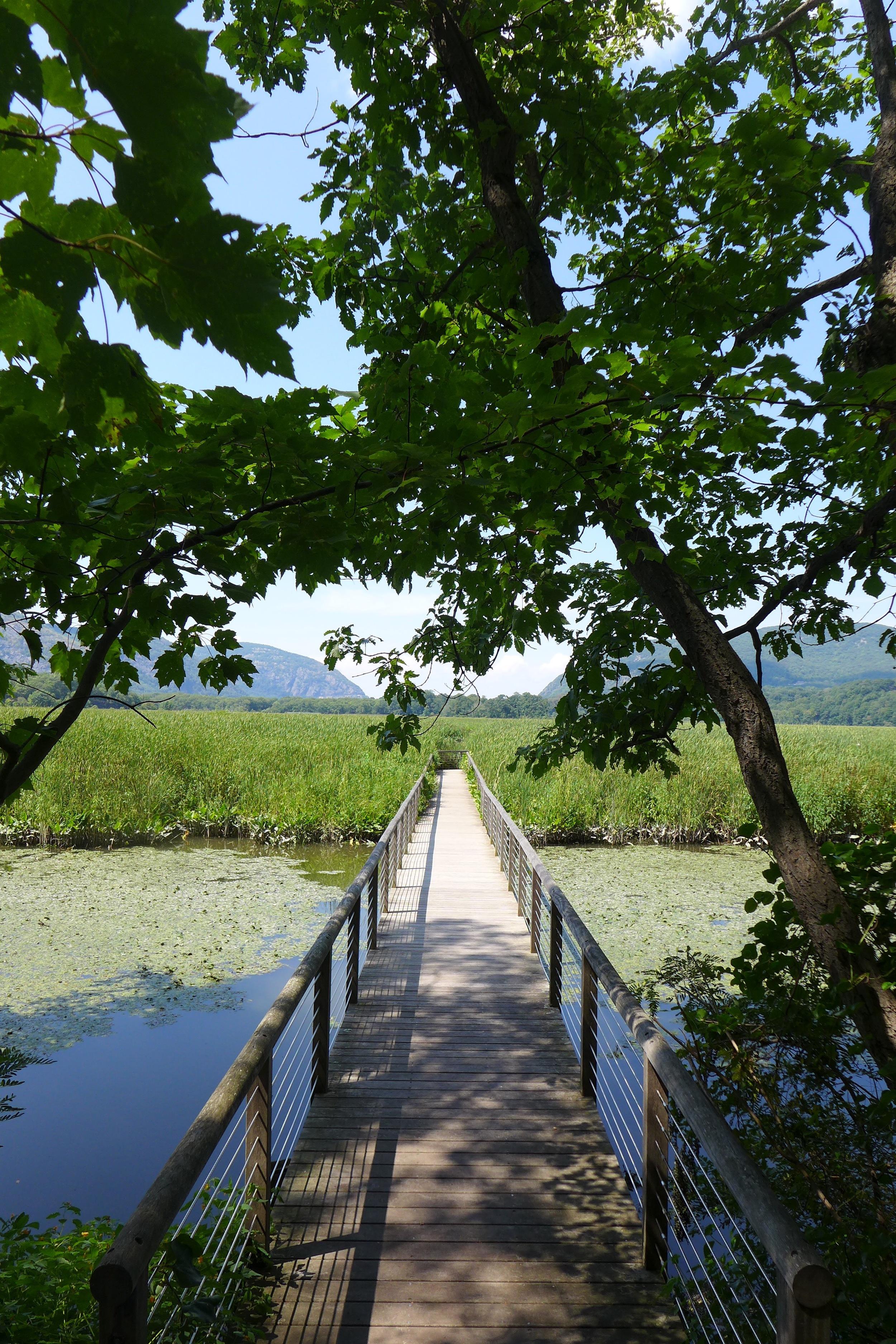 audubon-marsh-garrison-entrance.jpg