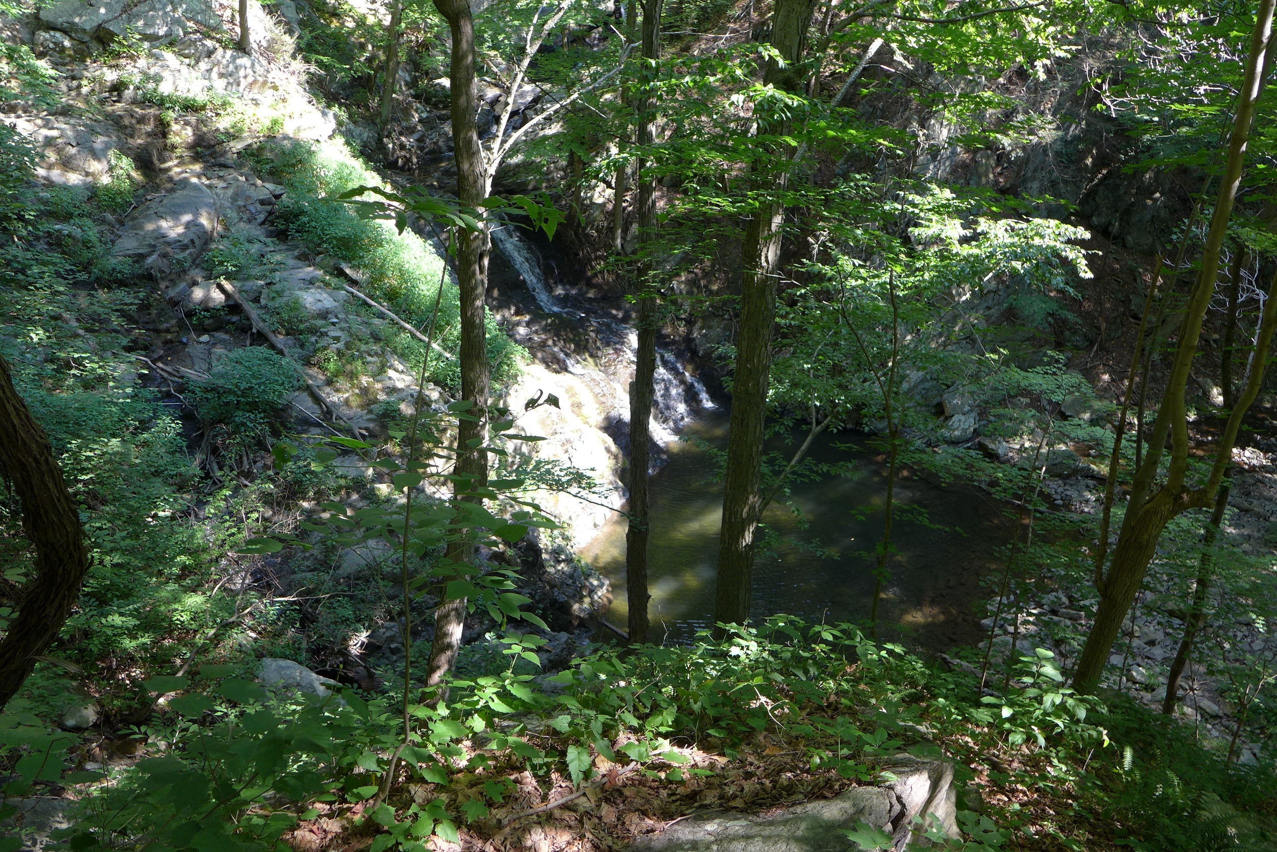 Approaching Philipstown park waterfall