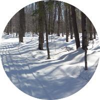atelier mile away winter