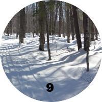 09_winter.jpg