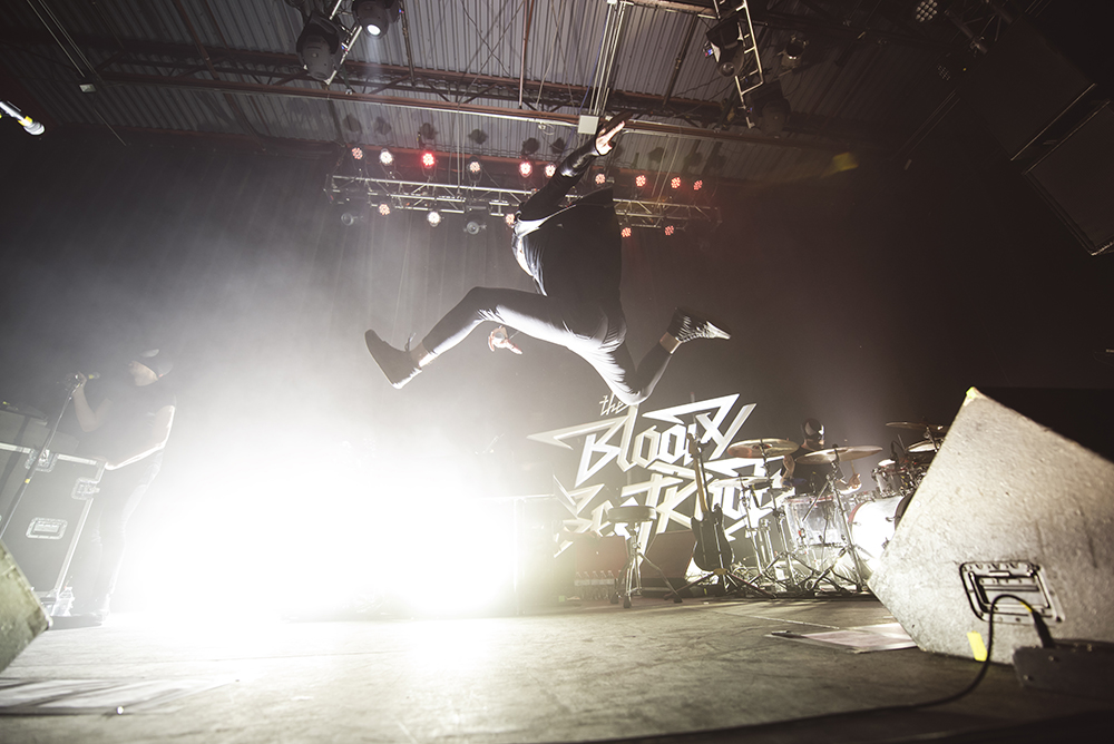 The Bloody Beetroots 26.jpg