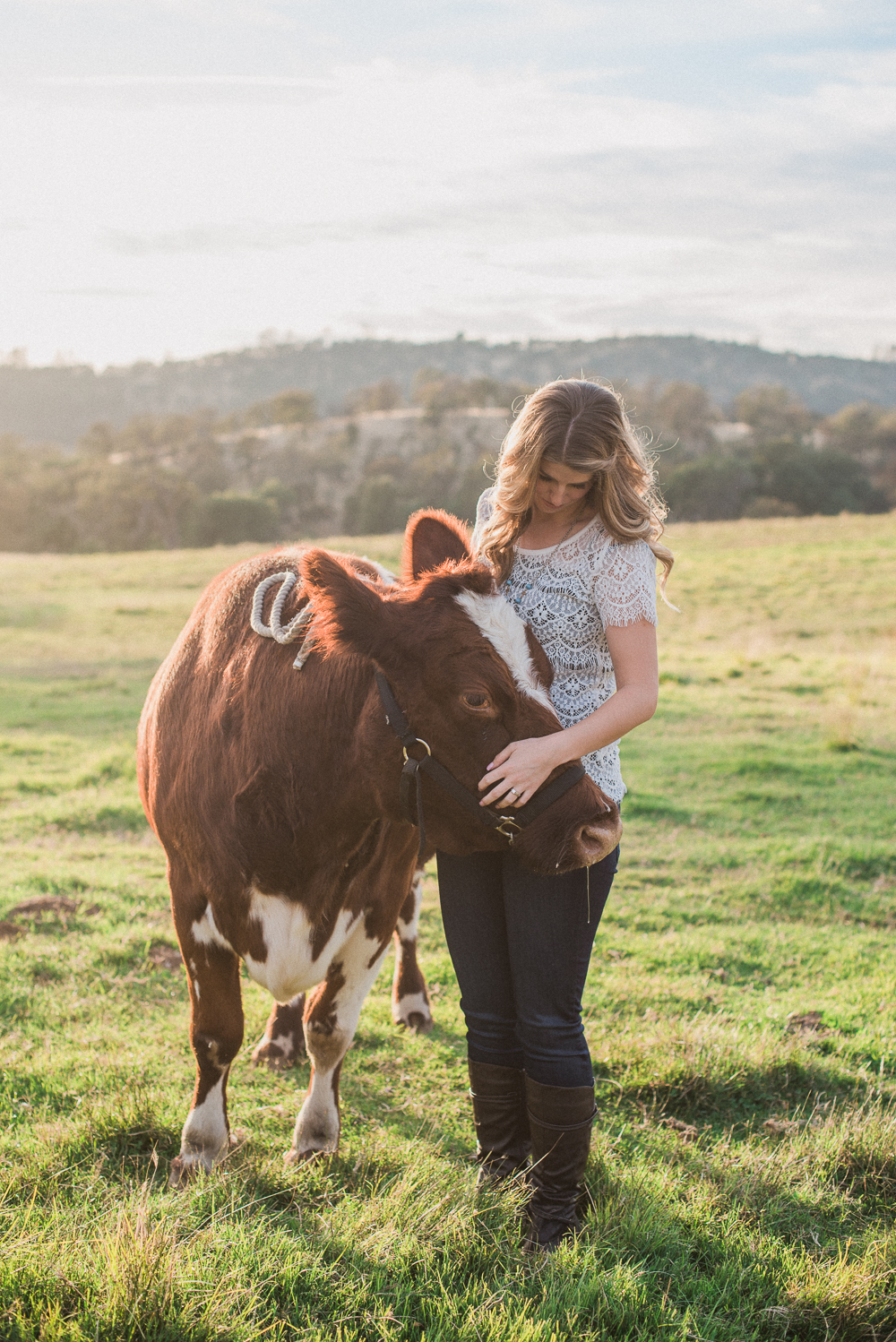 woman petting red cow