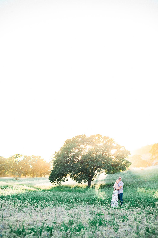Aaron & Lauren-027.jpg
