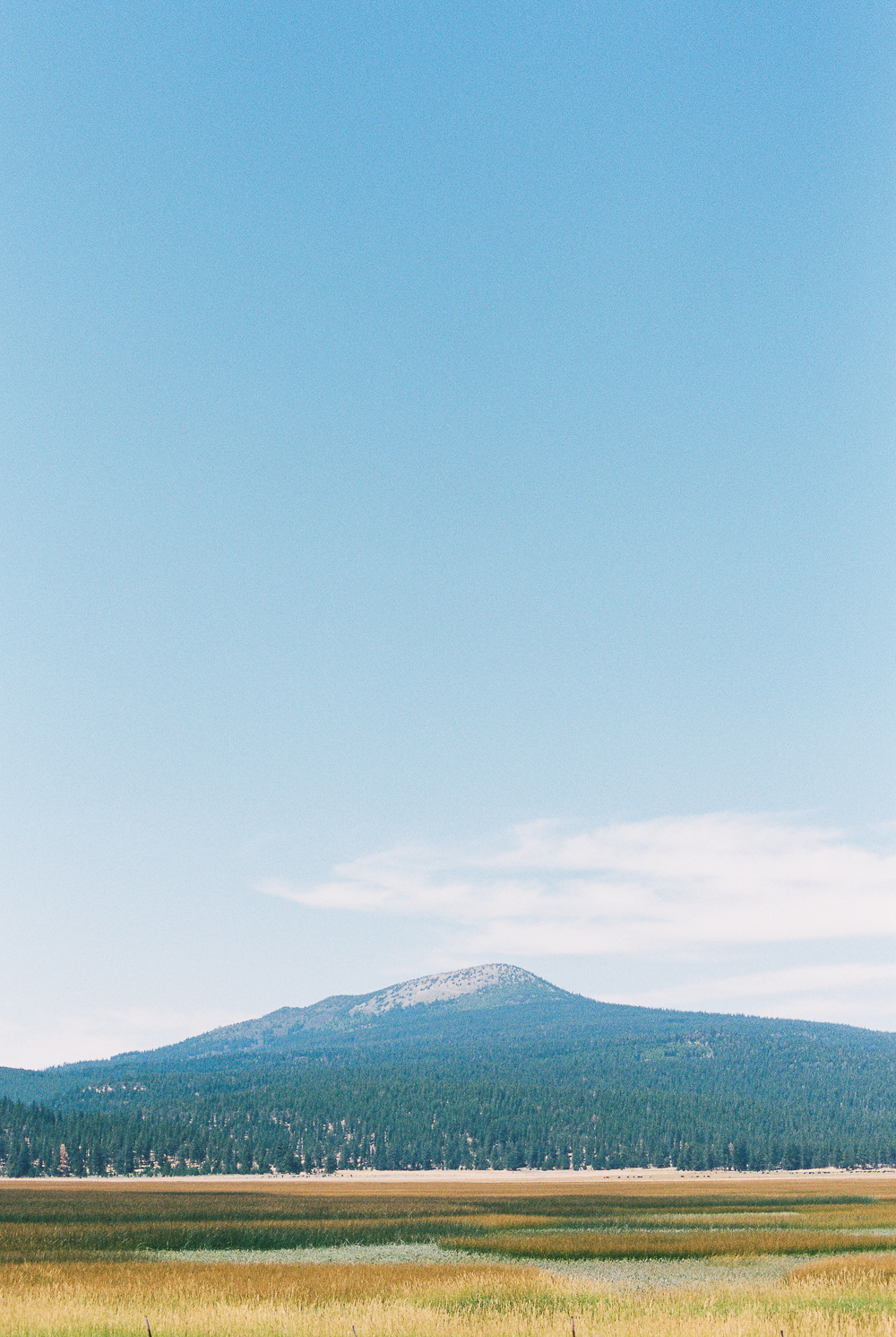 July 2017 - Portra 400 on Nikon N90s