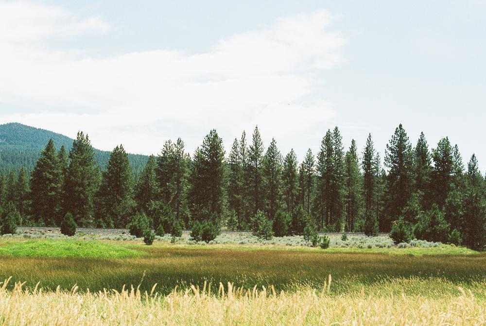 Sunriver, Oregon - Portra 400 on Nikon N90s