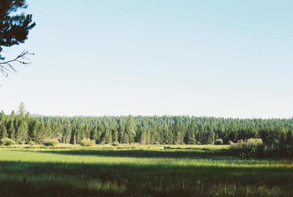 Along Deschutes River, Sunriver, Oregon - Portra 400 on Nikon N90s