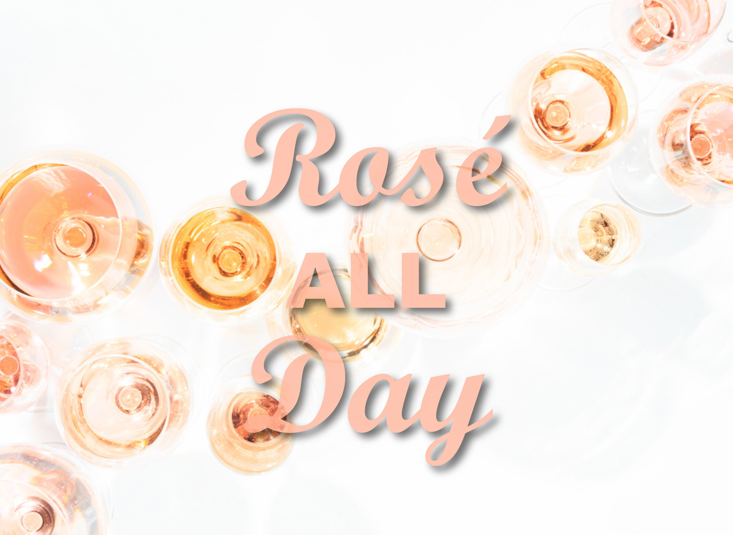 rose all day image.jpg