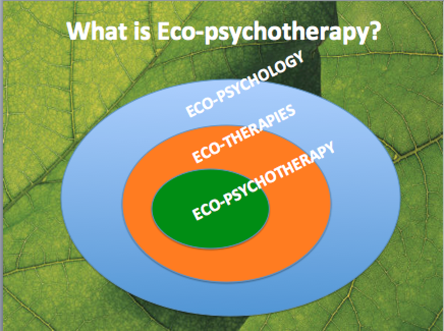 Eco-psychotherapy is a very specific type of eco-therapy.