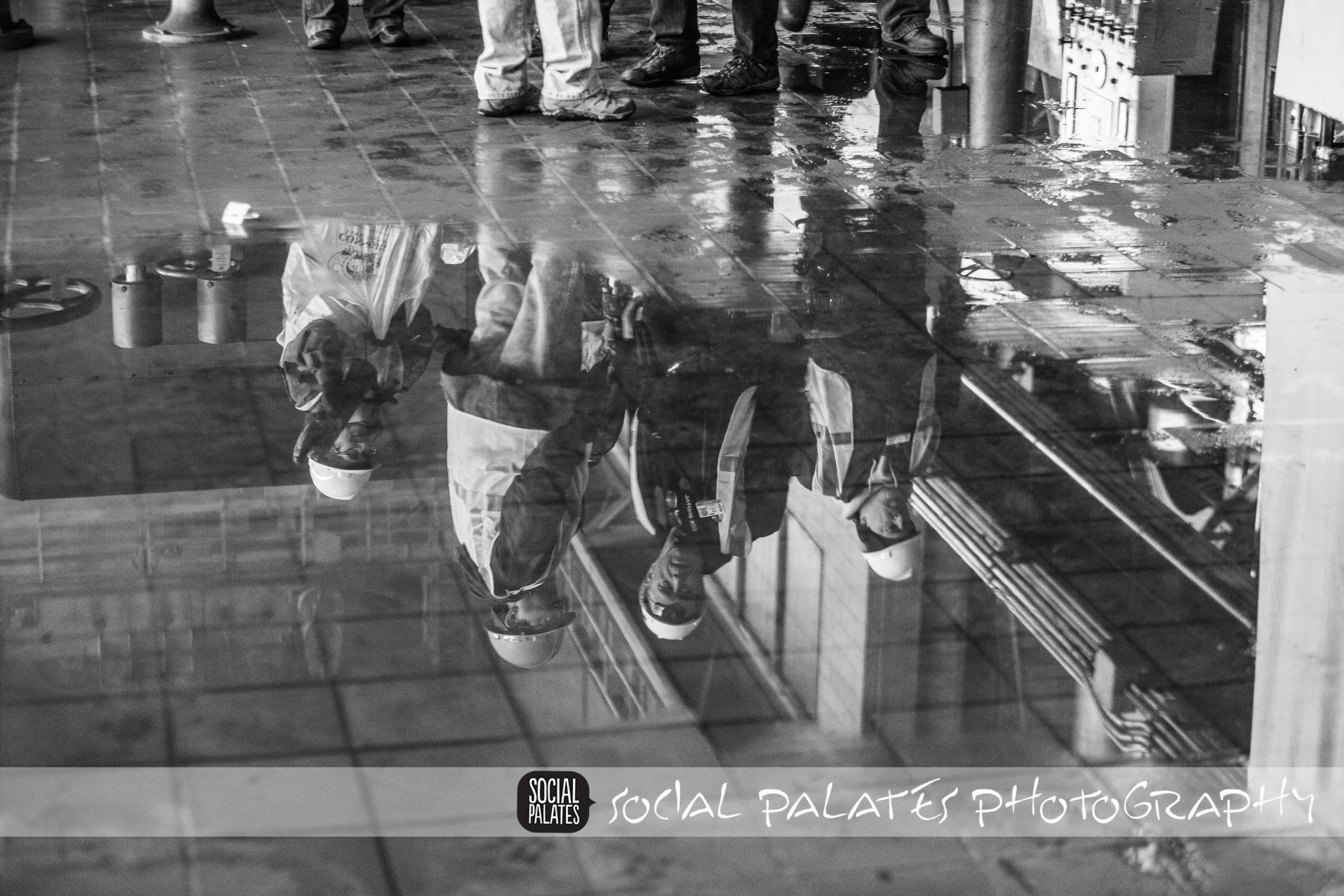 footprint plant_1071.jpg
