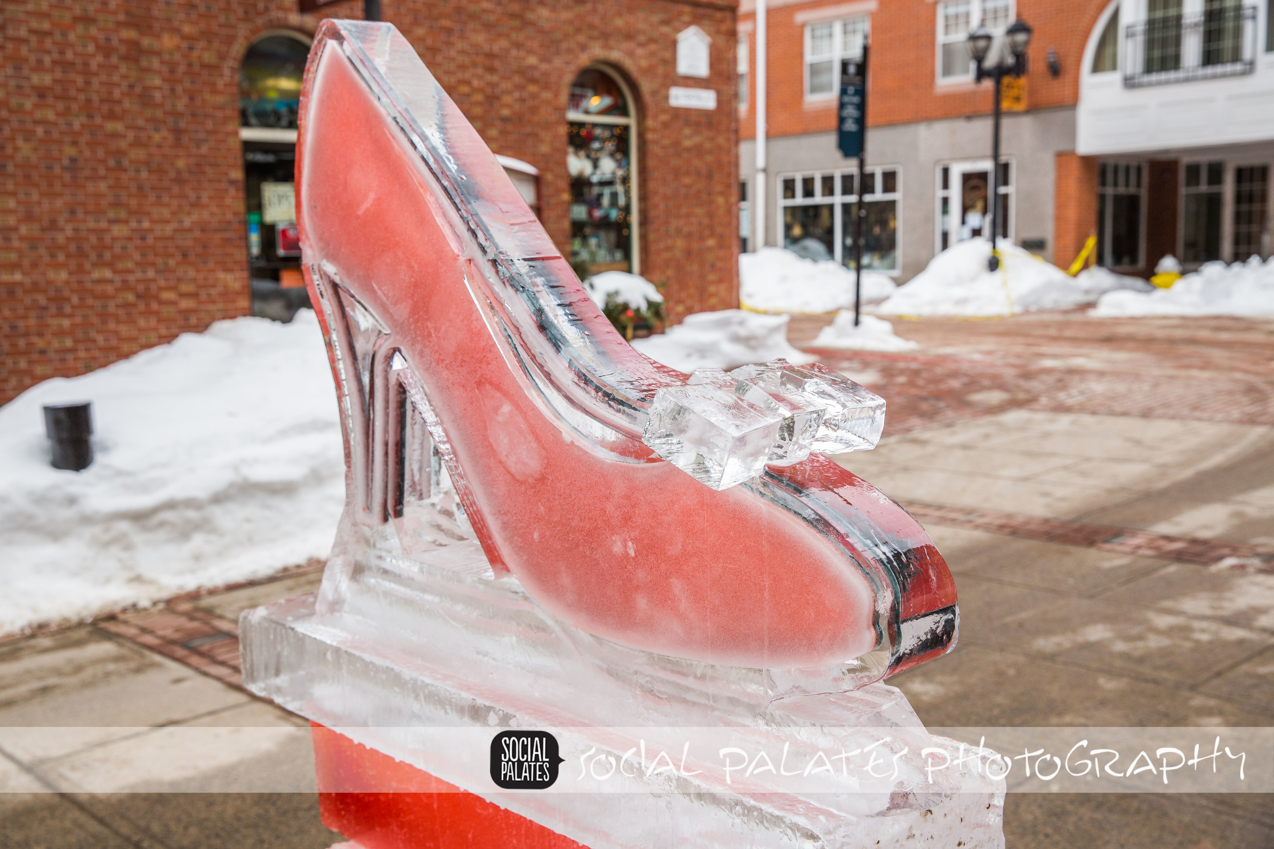 Salem Ice Sculptures 2015_9185.jpg