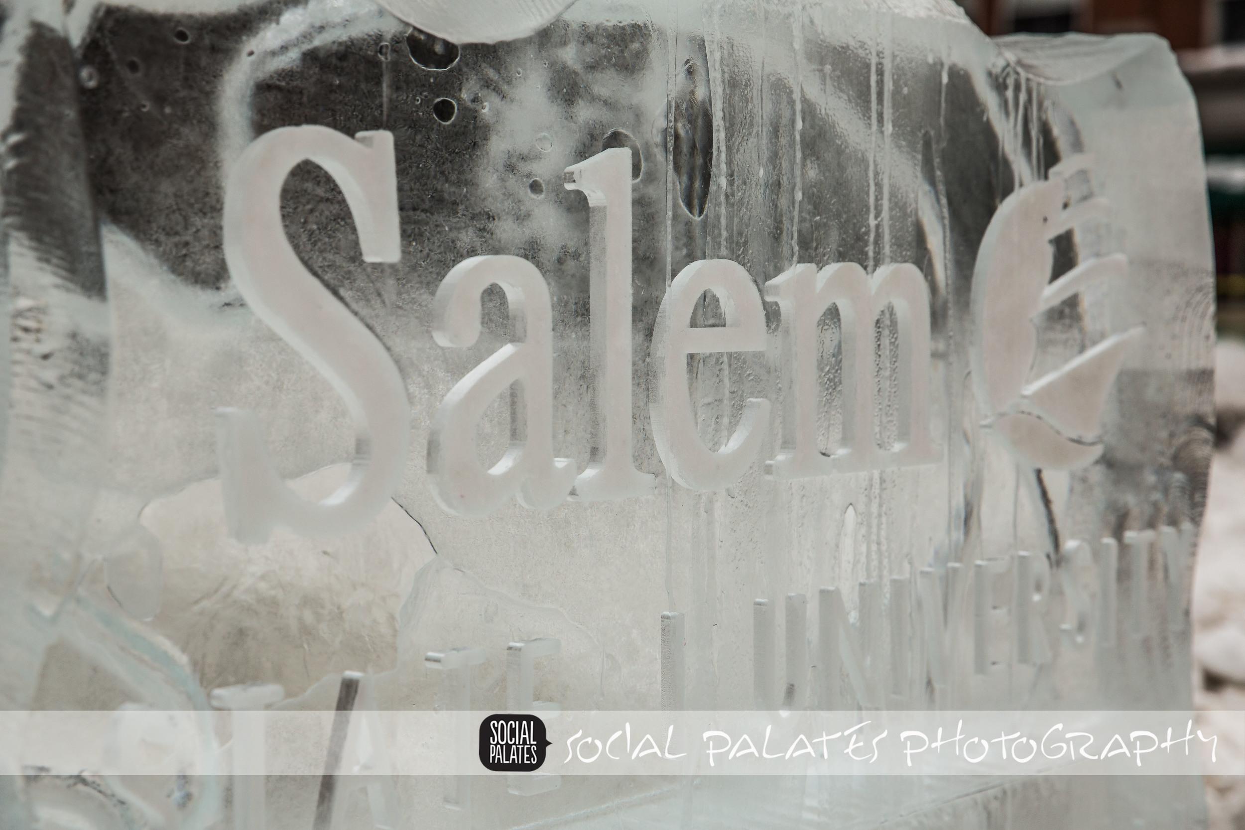 Salem Ice Sculptures 2015_9123.jpg