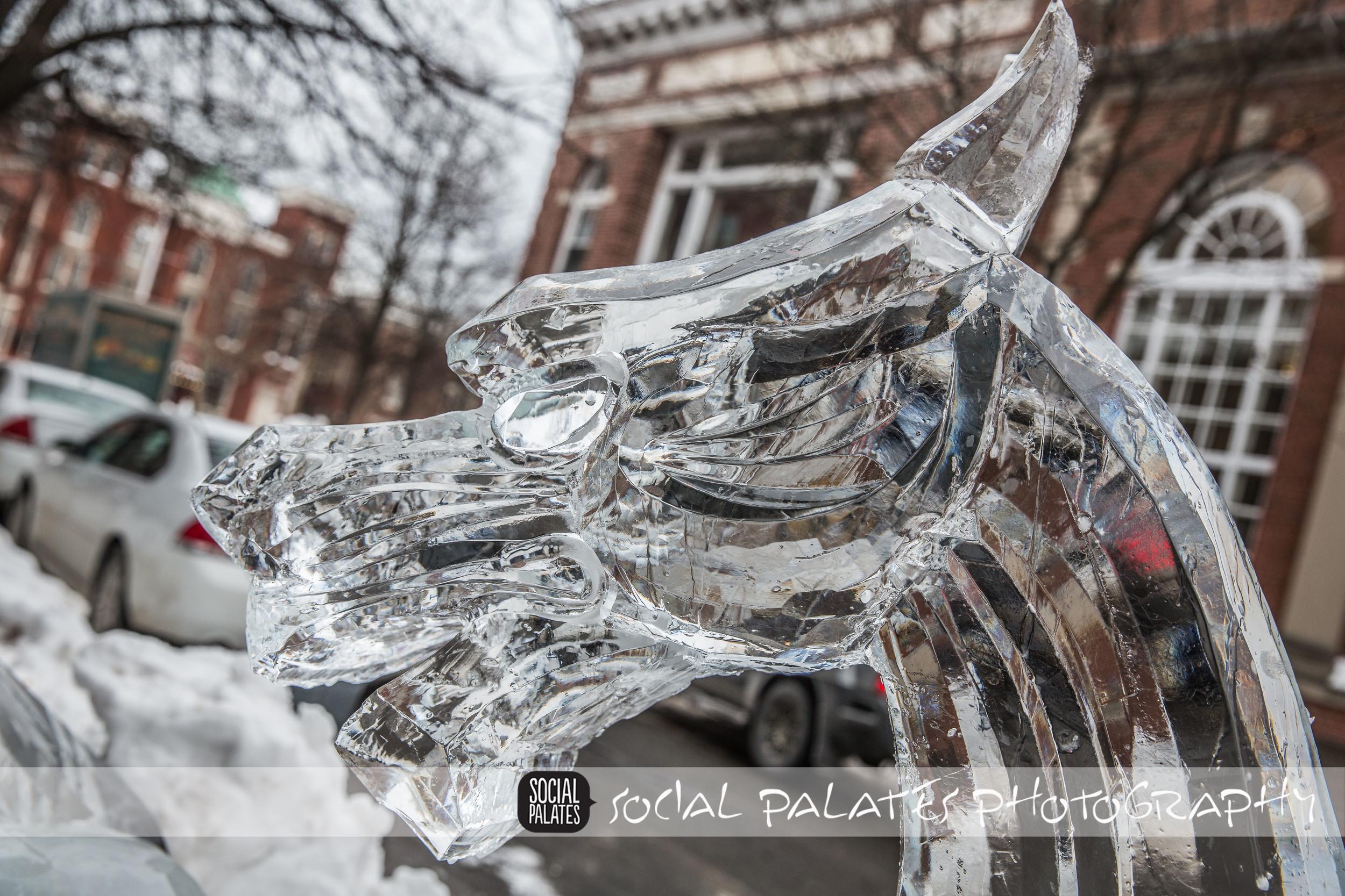 Salem Ice Sculptures 2015_9056.jpg