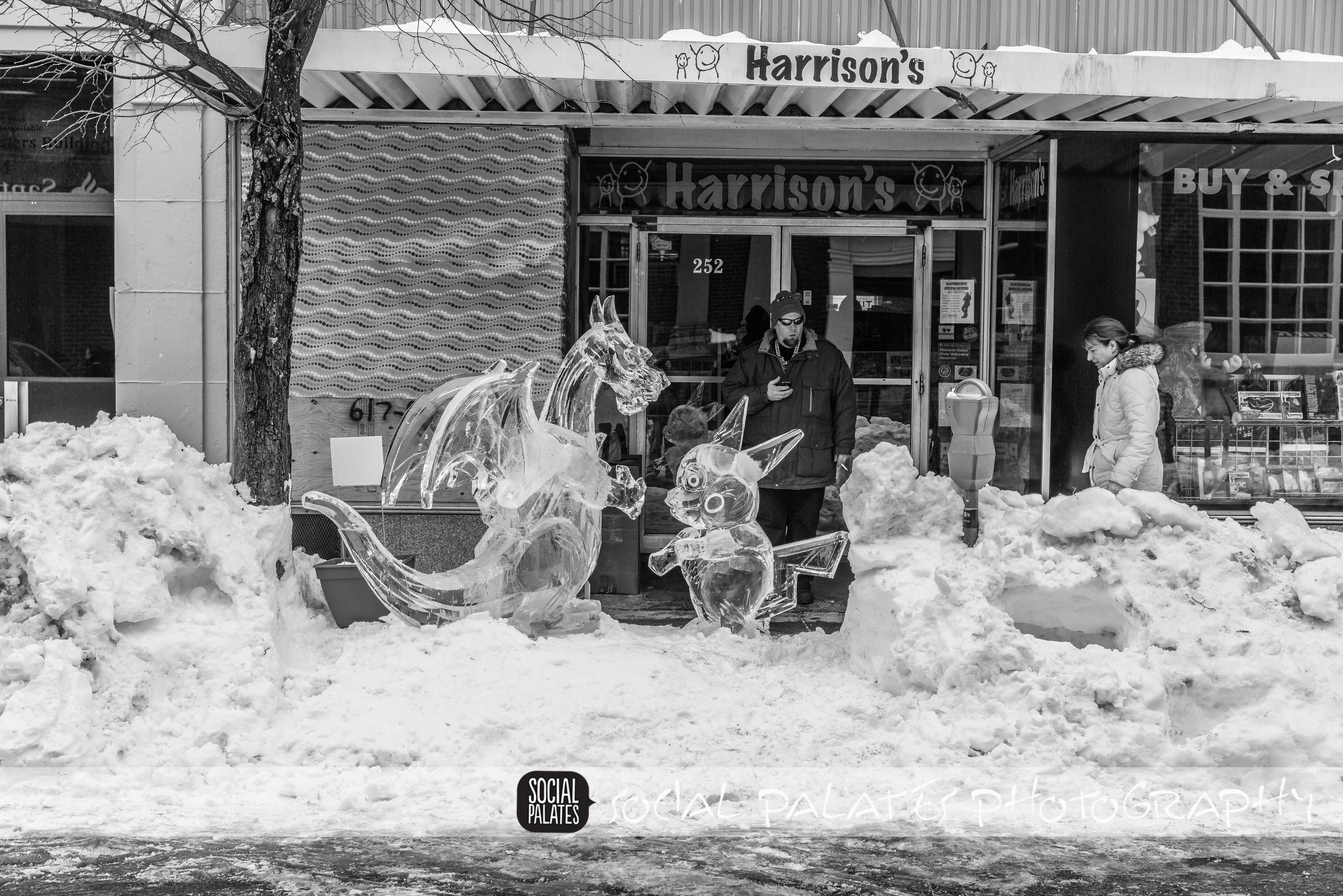 Salem Ice Sculptures 2015_9079.jpg