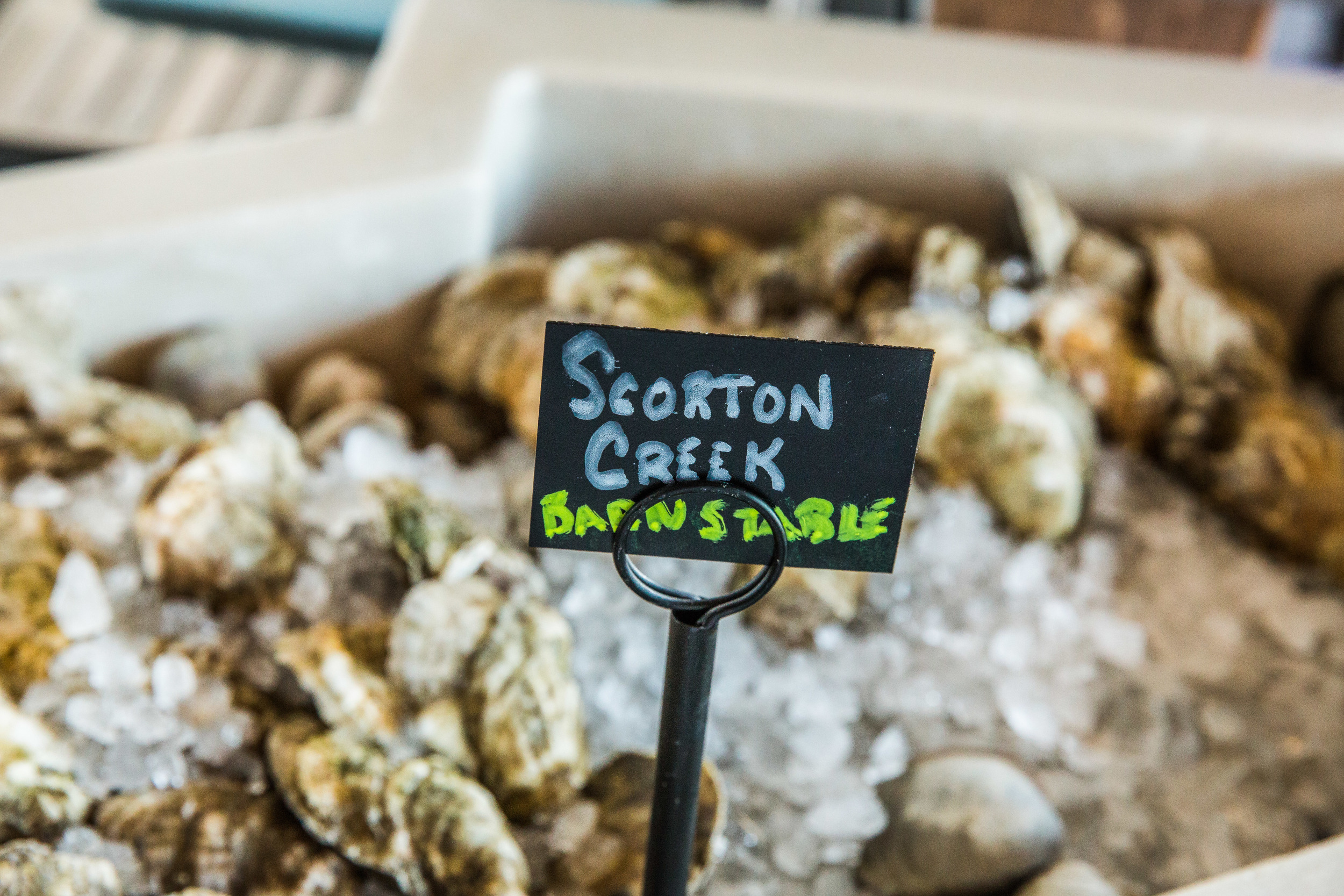 Sea LEvel Oyster Bar_4105.jpg