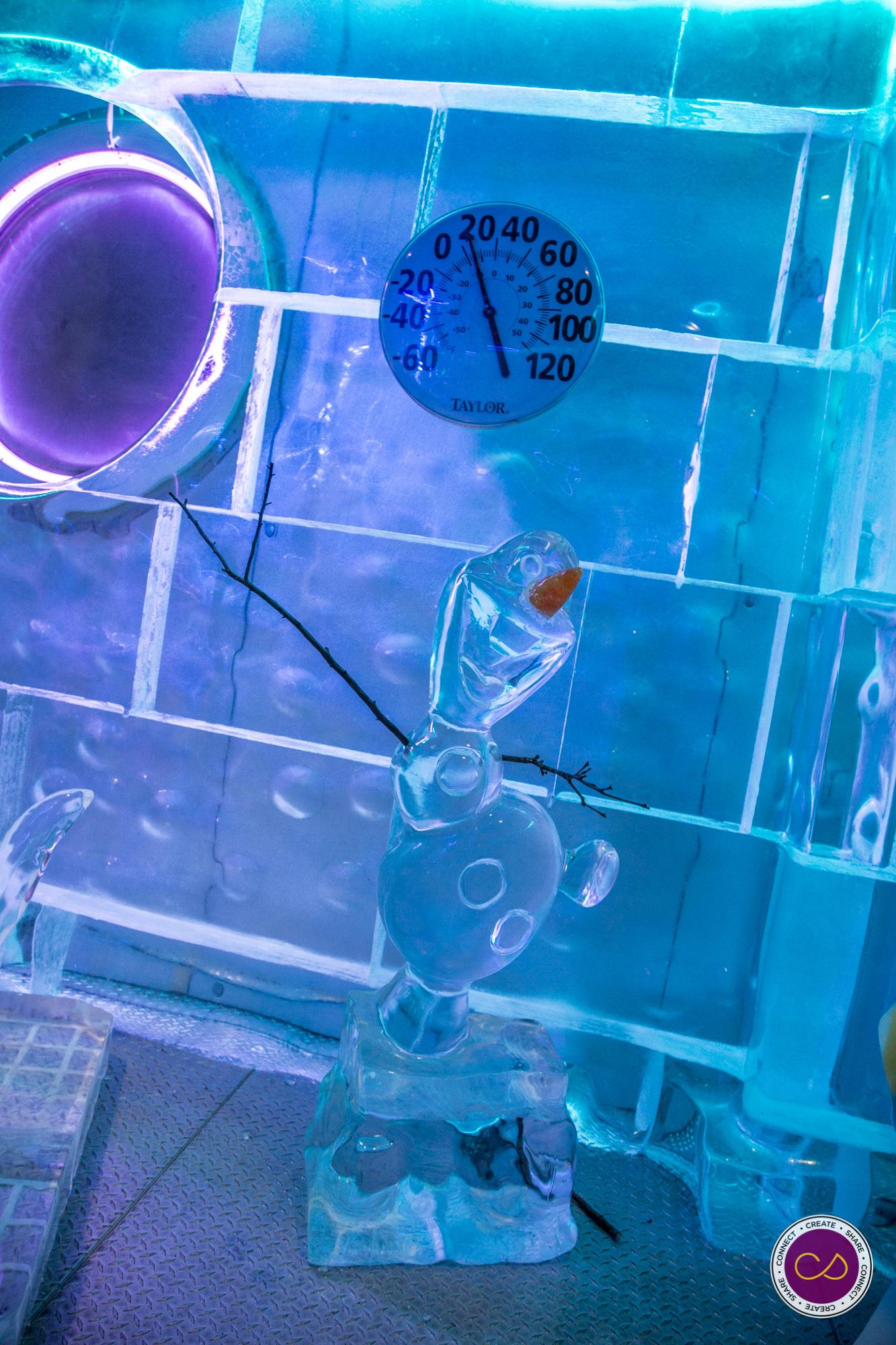 Frozen Tea CS-15.jpg