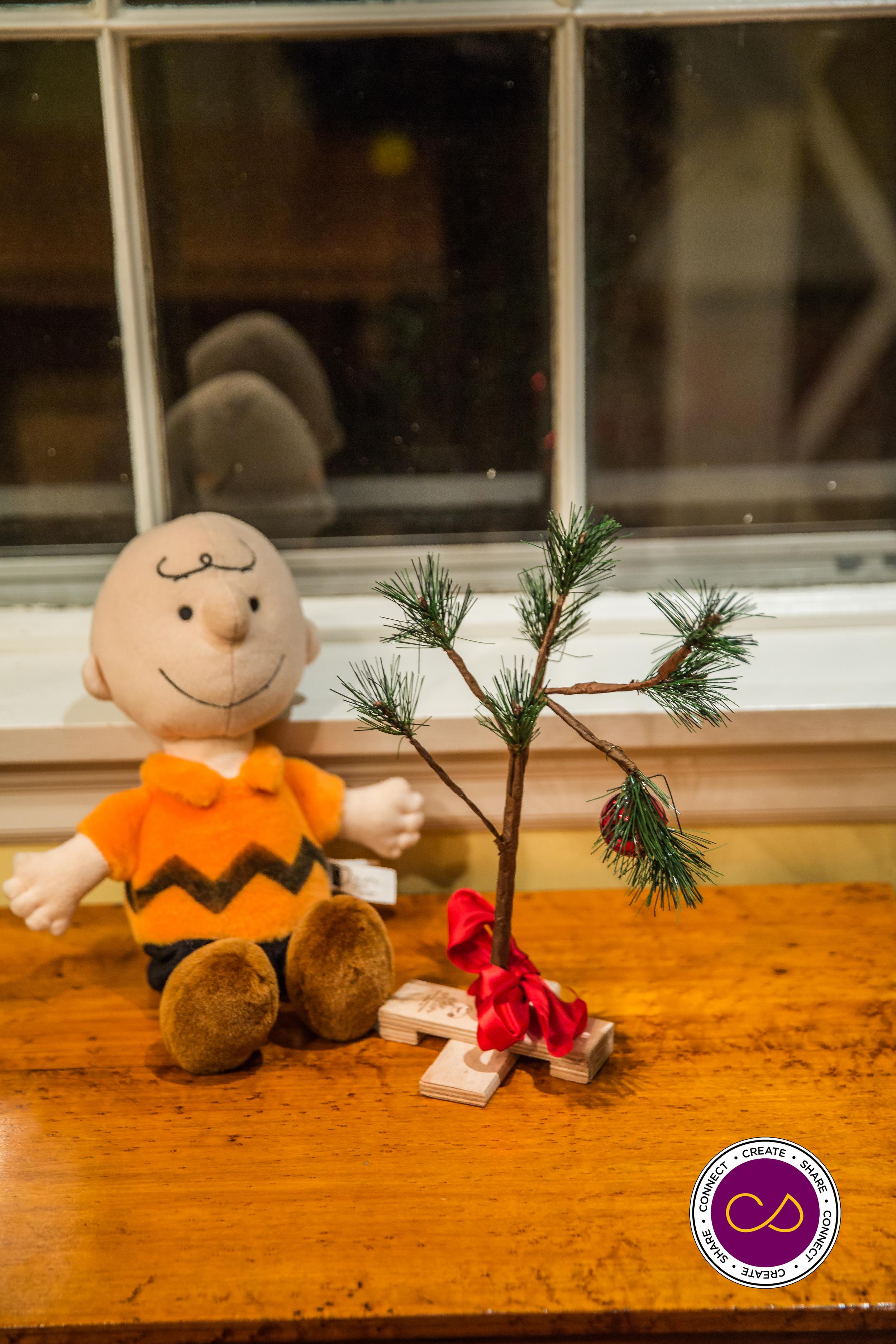 Christmas in Salem 2015-0448.jpg
