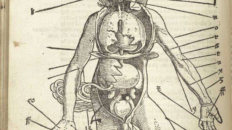 medical text.jpg