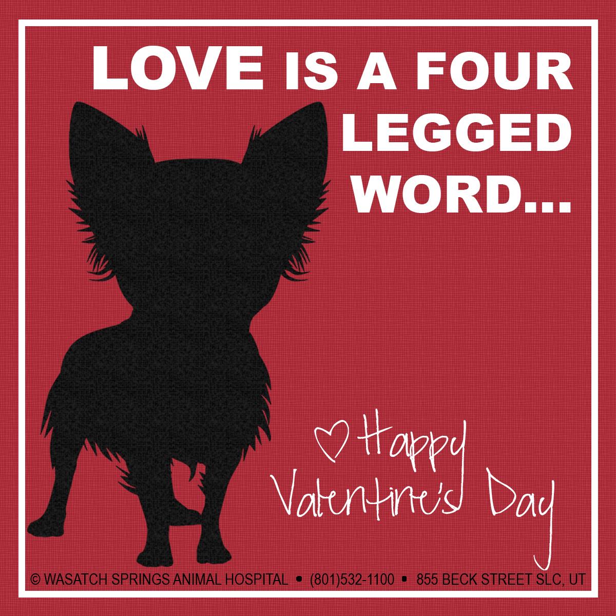Valentines2015-WSAH-dogLOVE.jpg