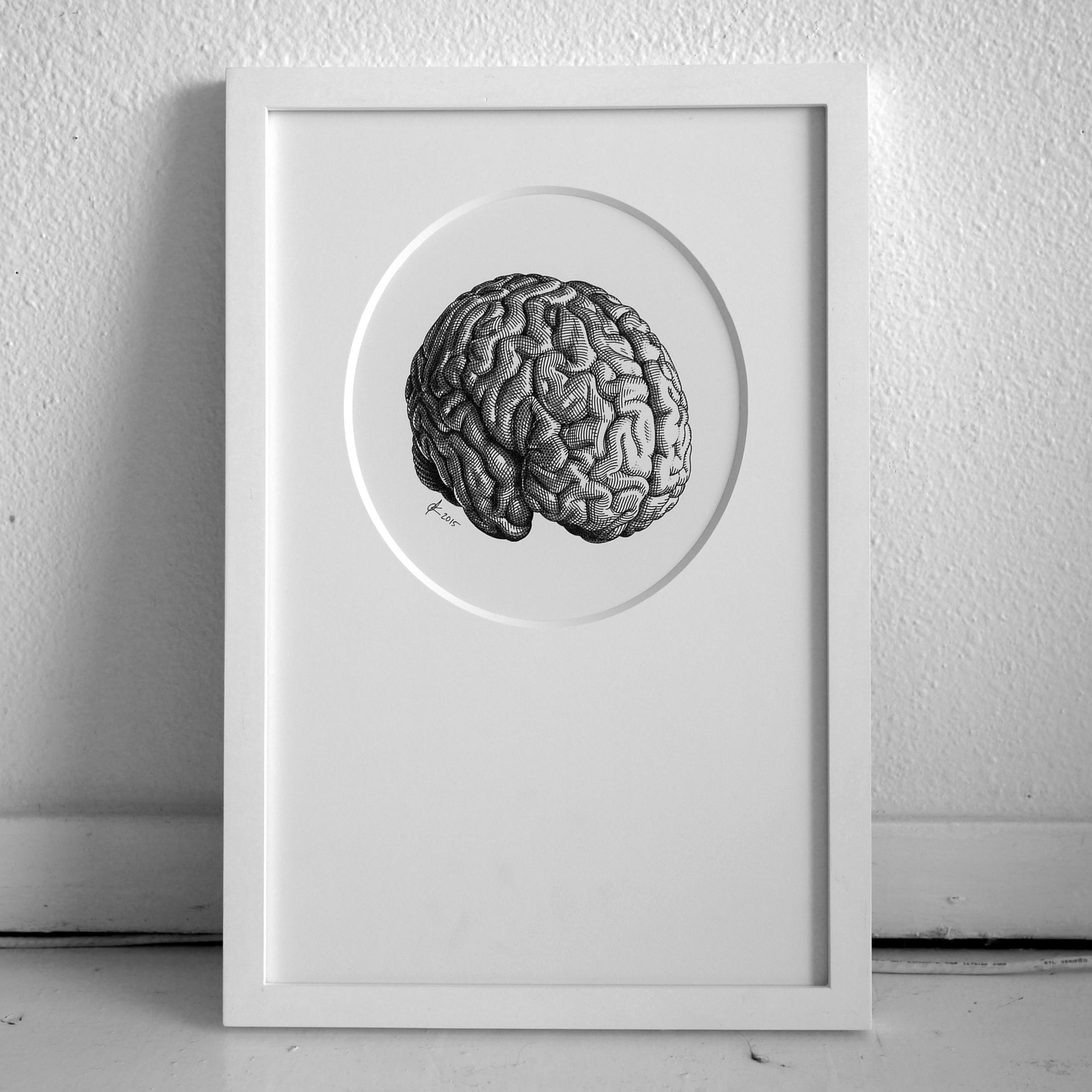 BrainOliviaKnapp