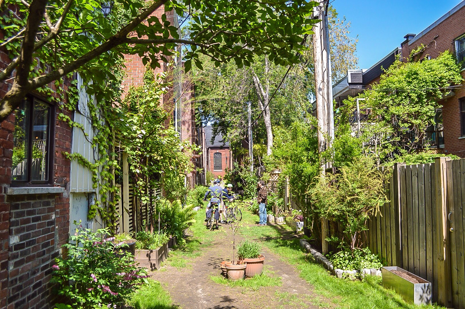One of the Plateau's many beautiful Green Laneways.