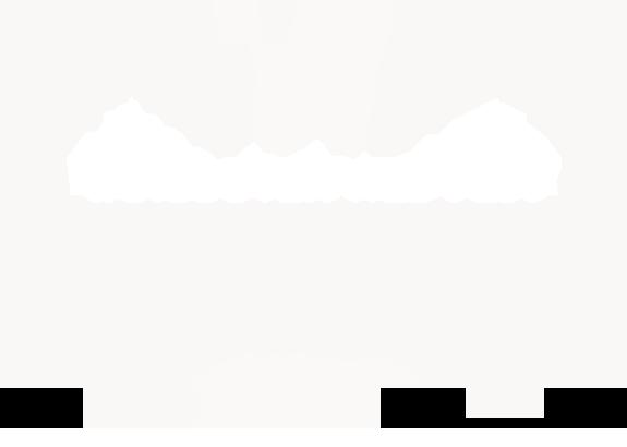 Web Fest.png