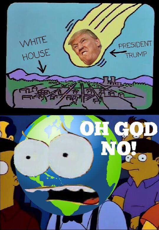 Thanks, Mike from  The Simpsons Against Donald Trump .