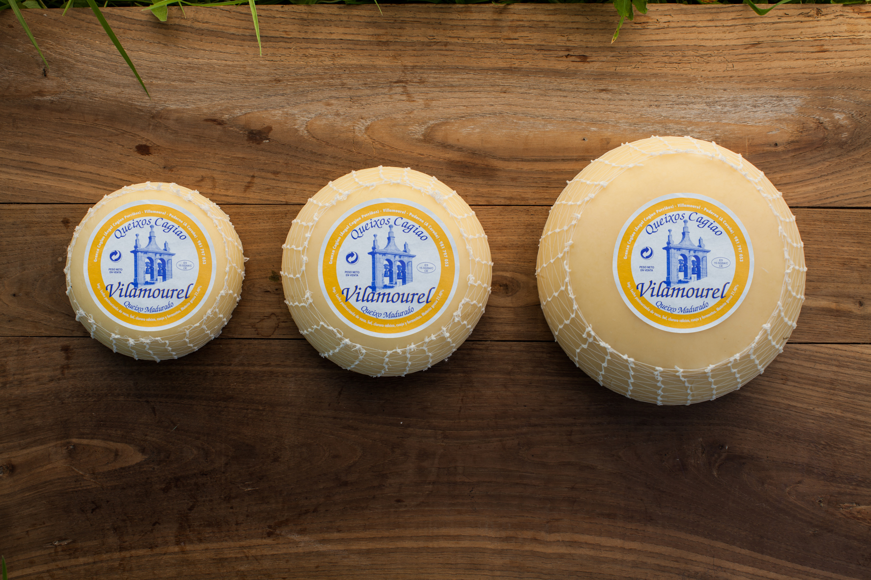 queso-fresco-curado-53.jpg