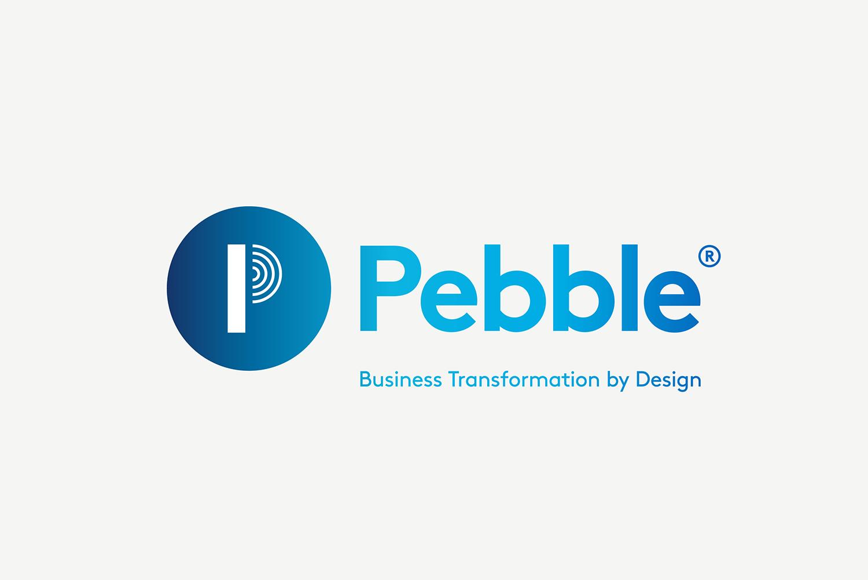 Pebble Case Study-02.jpg