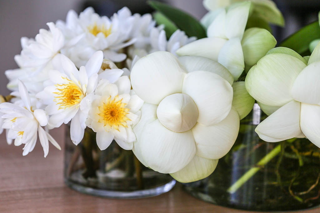 Fleur Dainty (1 of 7).jpg
