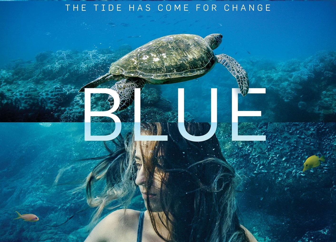 B L U E  T H E  F I L M   Tim features as one of seven ocean guardians in this 2017 blockbuster documentary. Through the eyes of Tim, viewers learn about the perils of plastic pollution and the breadth of solutions required to save our oceans. Blue continues to be screened in film festivals and community events around the world.