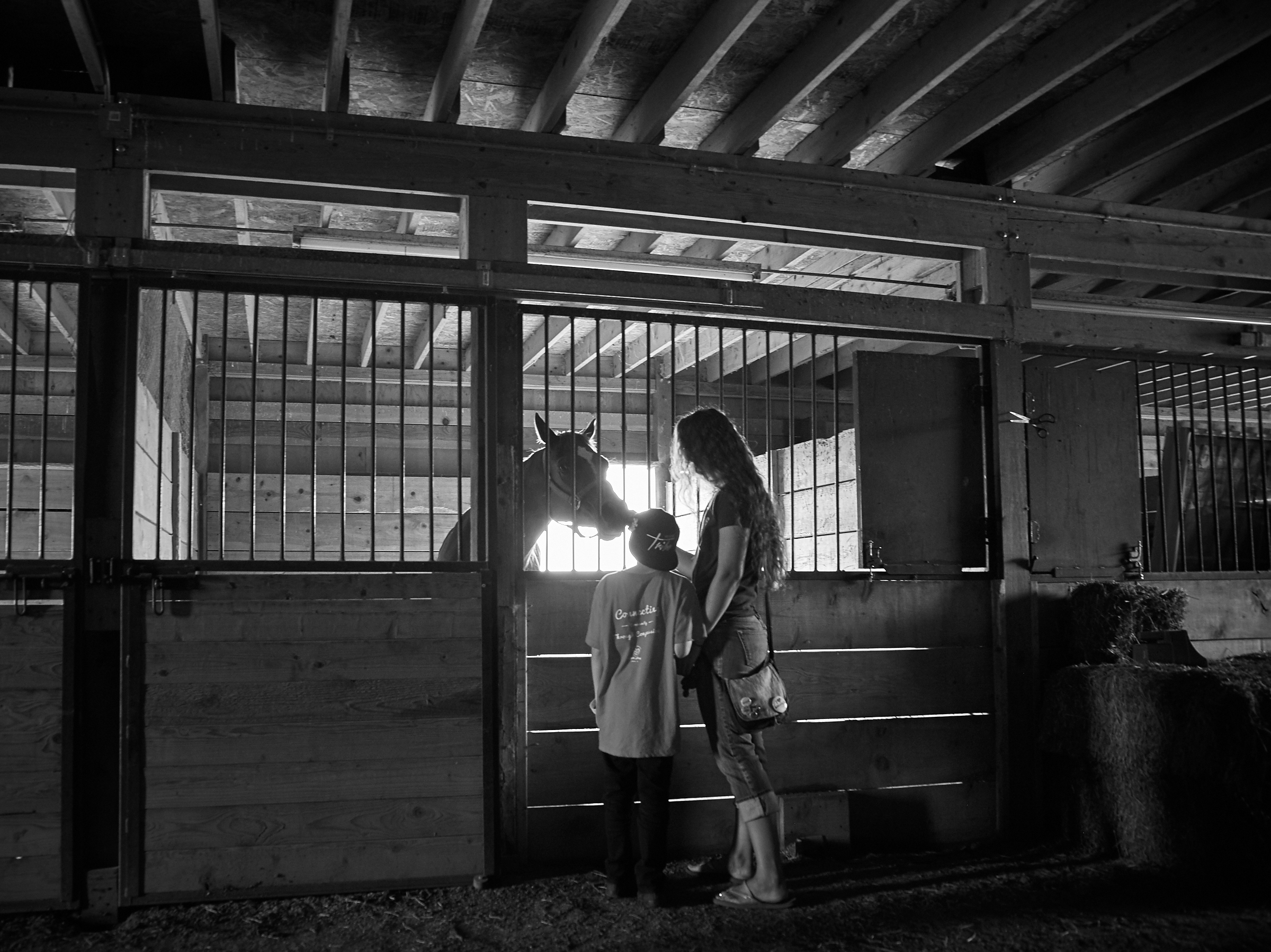 Mother and son meeting a mare. Nothing being said the connection is made.