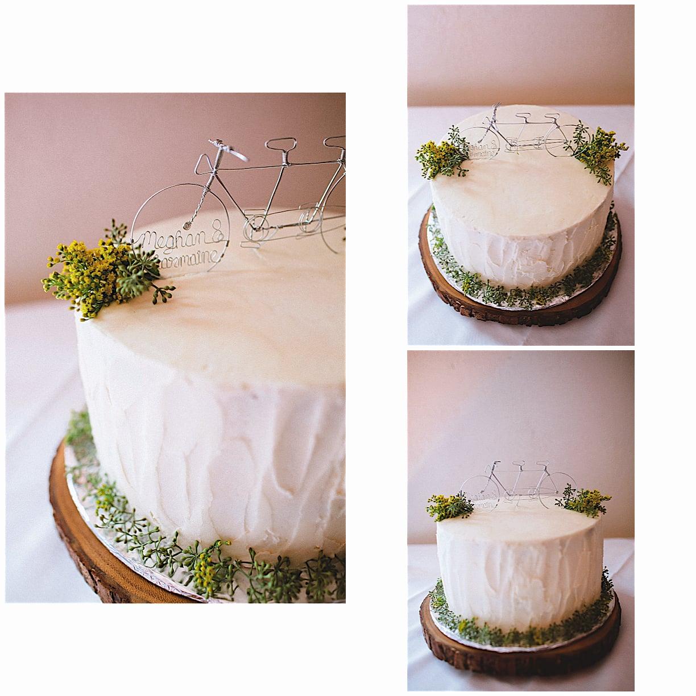 Aviary cake photo.jpg8.jpg