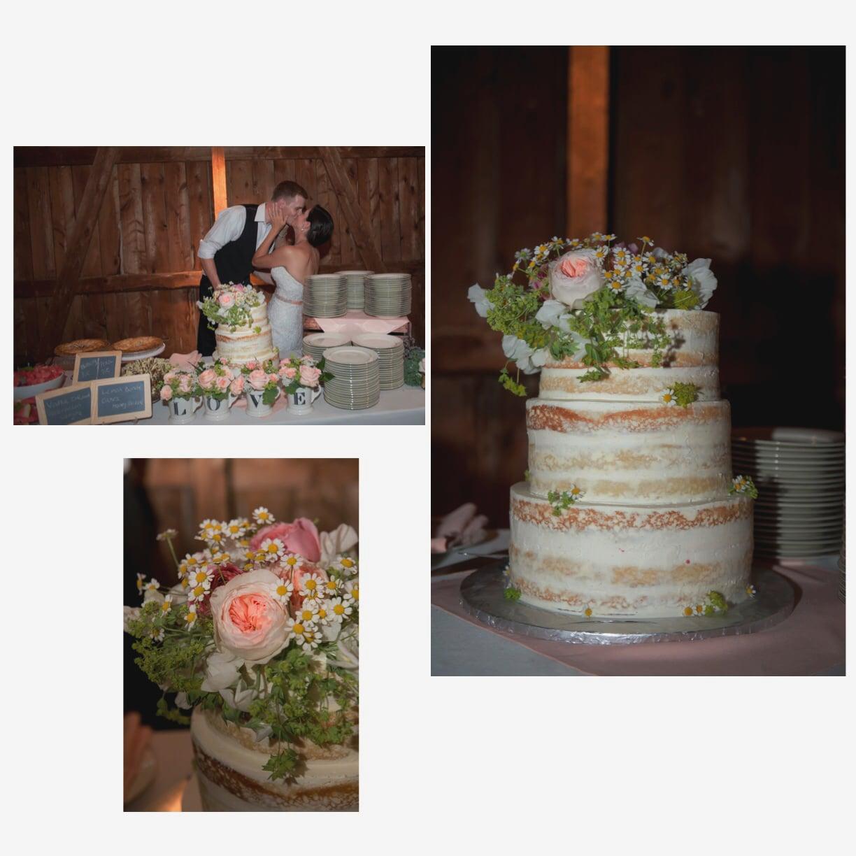 Aviary cake photo.jpg16.jpg