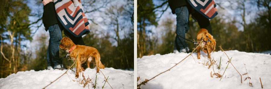 Somerset wedding photographer Sam and Pete engagement shoot 12