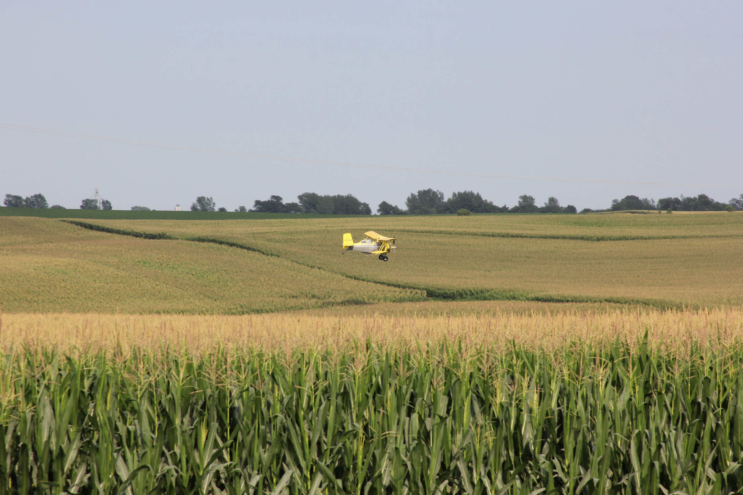 Image of crop duster applying pesticide to corn by Brad Covington