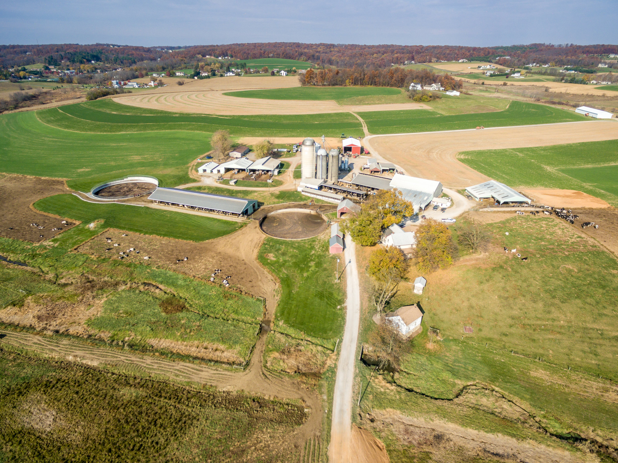 Aerial image of Maryland dairy that shows lagoons, barns, pastures, and other buildings.  Image by Edwin Remsberg