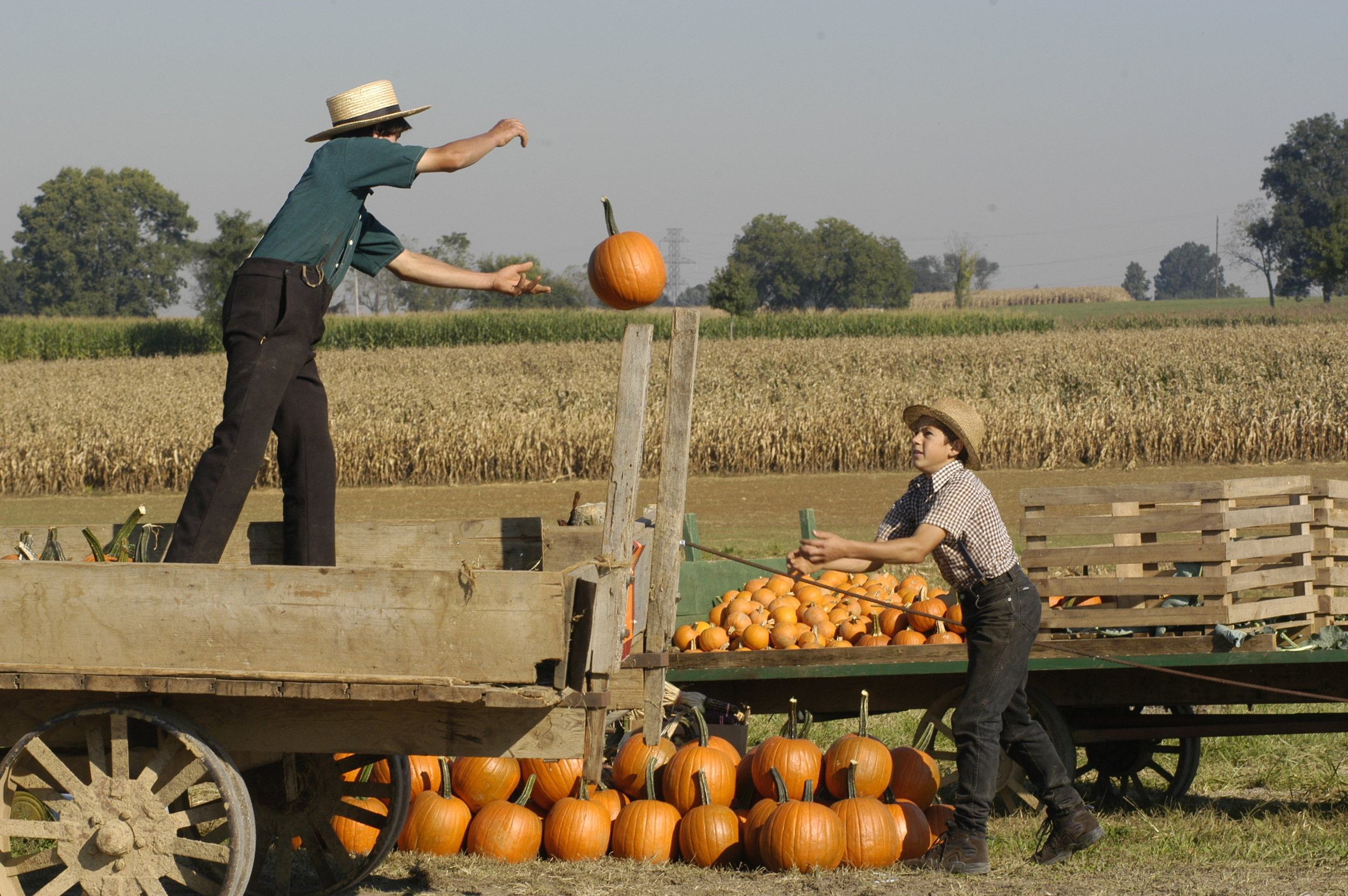 Image by Edwin Remsberg. The image is from Pennsylvania and shows two Amish boys unloading pumpkins from a wagon.