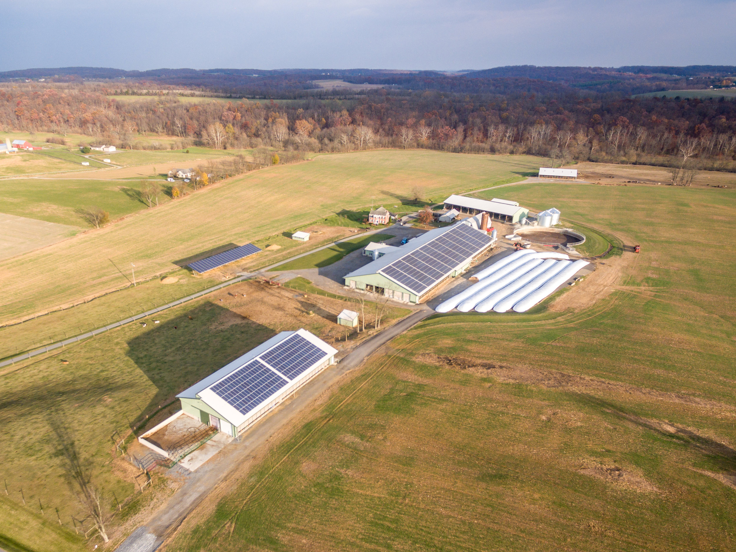 Aerial image of a dairy in Maryland.  Image by Edwin Remsberg