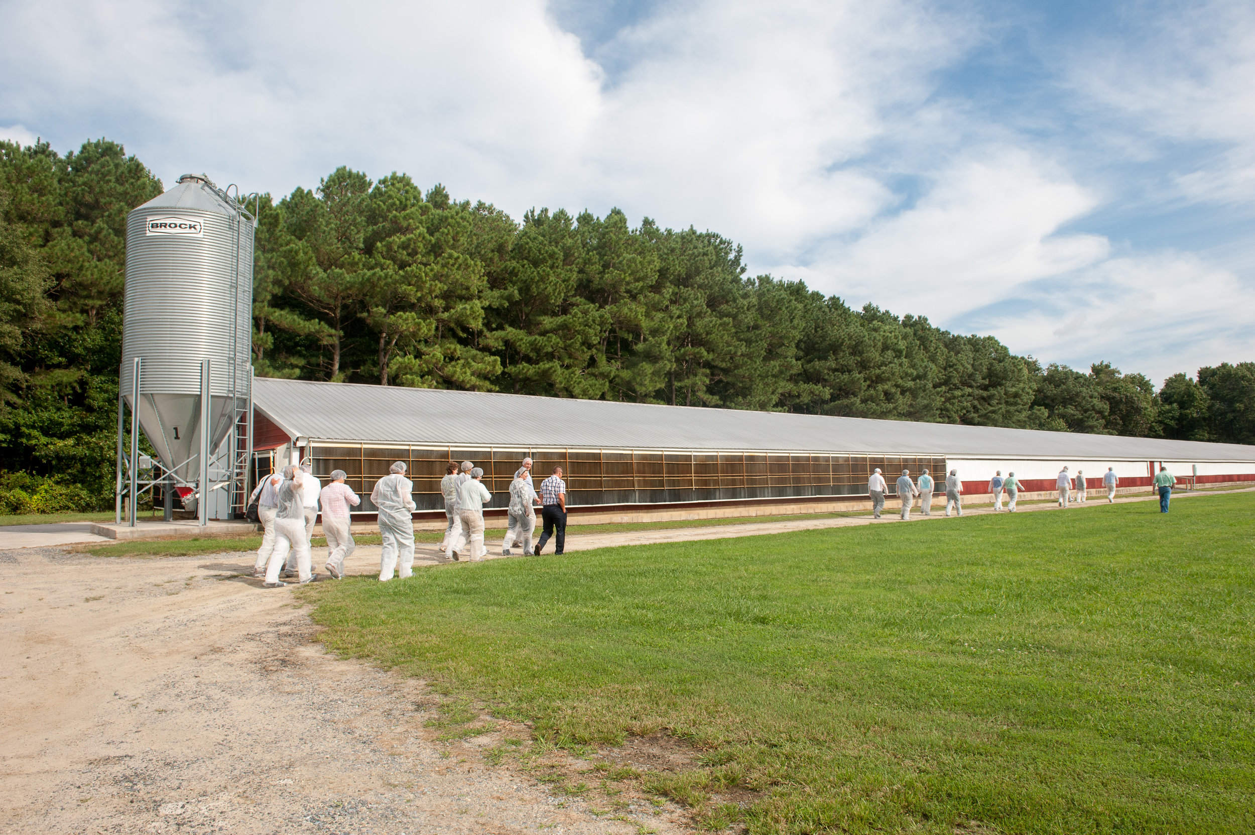 Poultry houses in Maryland with people walking in front of them.  Image by Edwin Remsberg