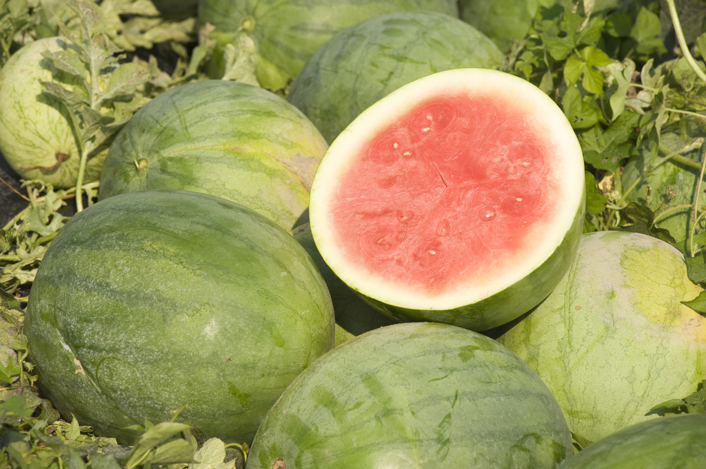 Photo shows several watermelon piled up with one cut open. Photo taken by Edwin Remsberg.