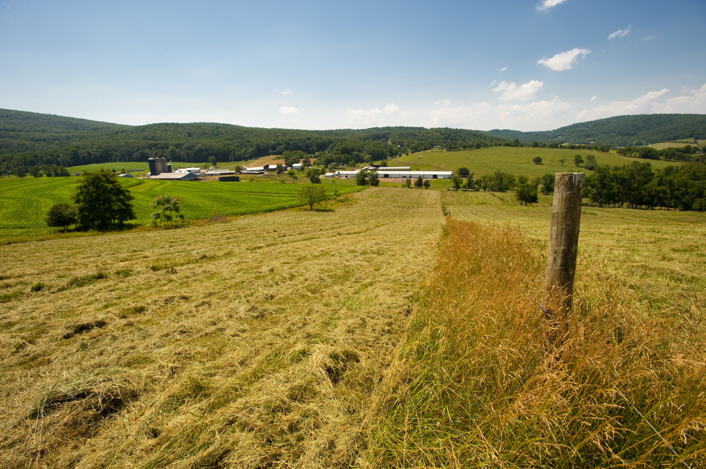 Image shows a chopped field of hay looking over a farm. Photo by Edwin Remsberg.