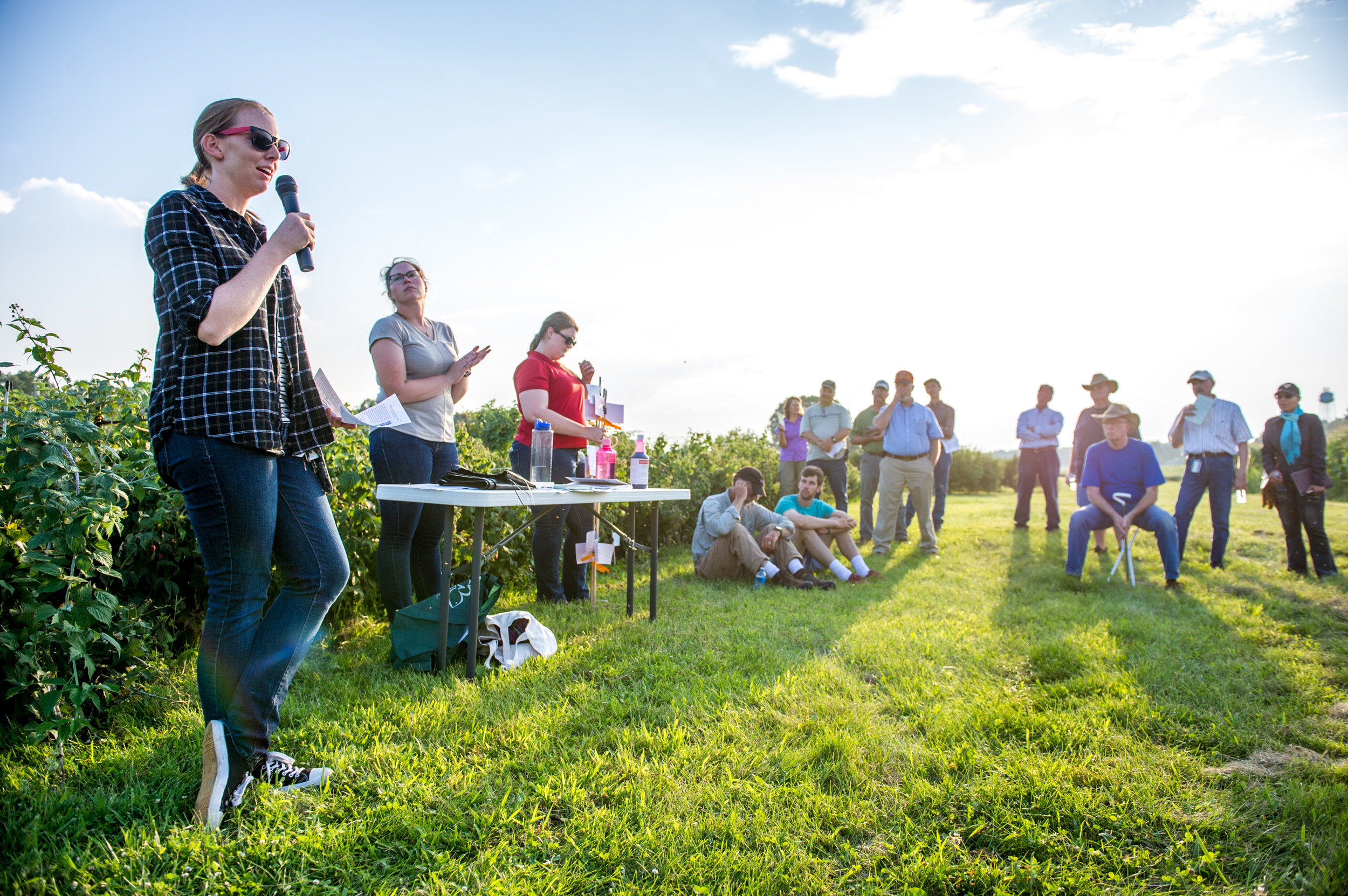 Image by Edwin Remsberg. Image of participants at the WMREC Horticulture Twilight Tour.