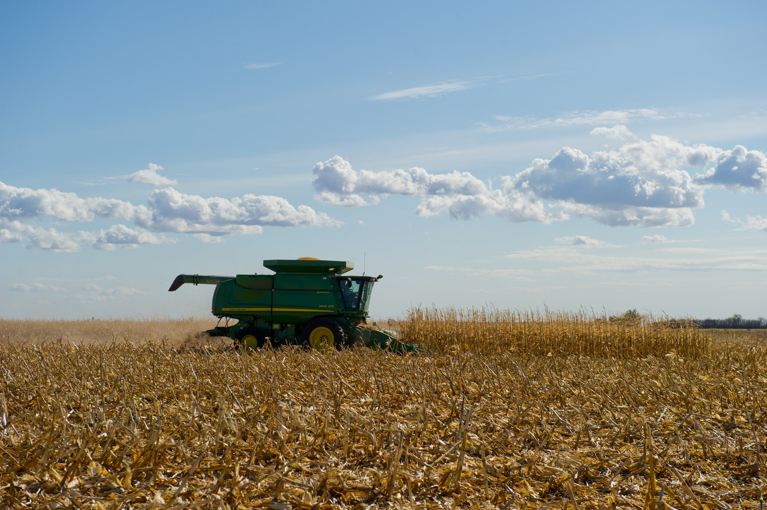 Image by United Soybean Board. Image shows combine harvesting corn.