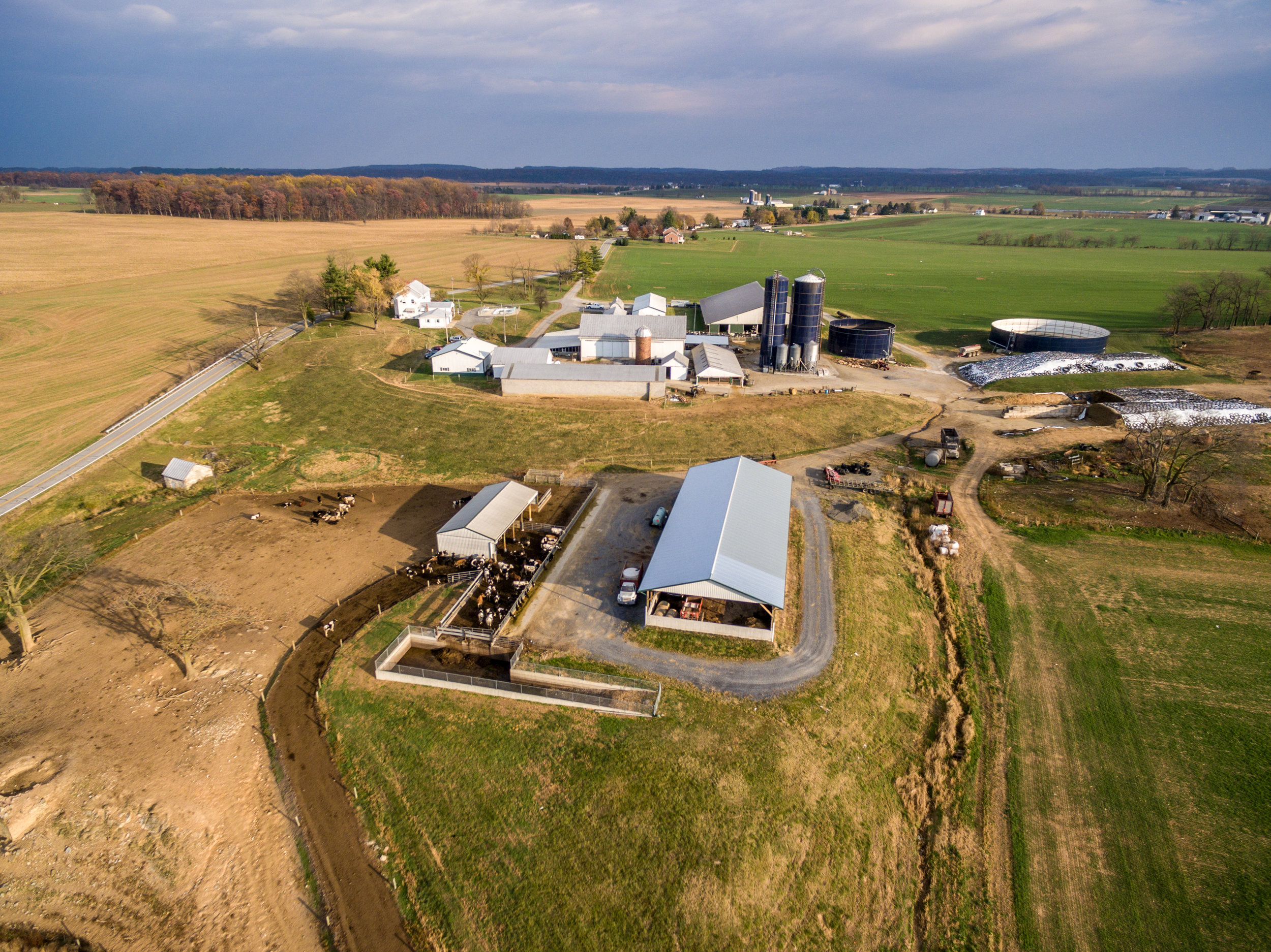 Image by Edwin Remsberg. Aerial image of Glade Haven Farms LLC, showing dairy barns, grain silos, and pastures.