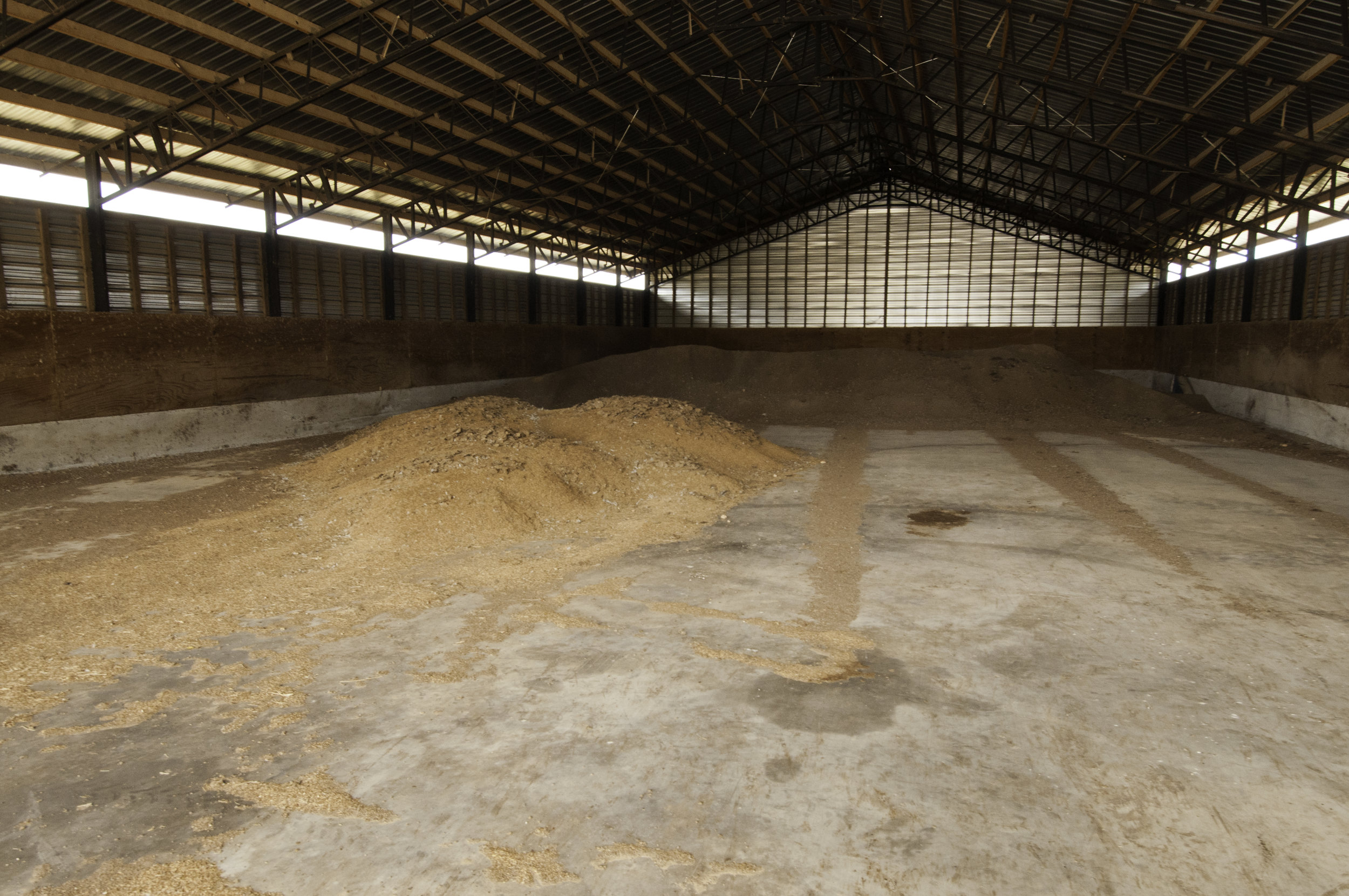 Dry stacking of poultry manure in poultry house. USDA photo by Bob Nichols.