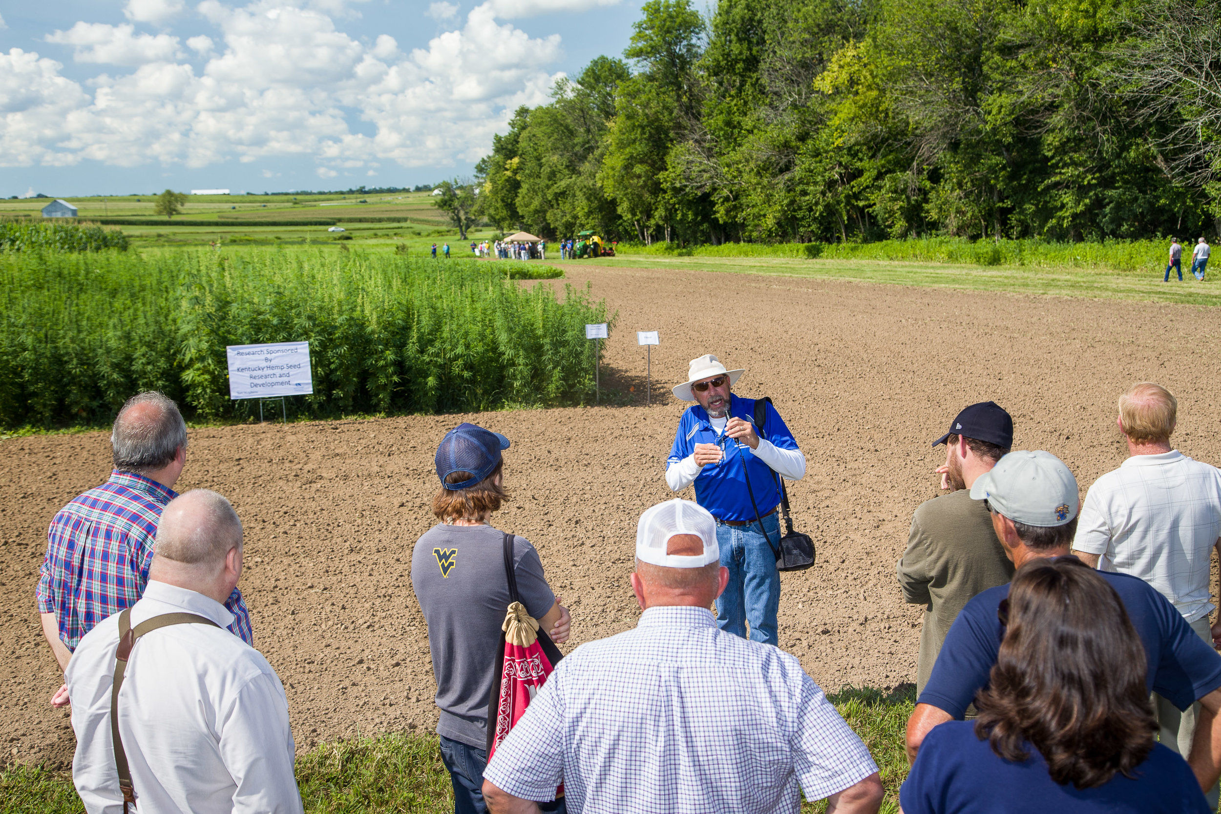 Industrial hemp field day hosted by University of Kentucky. Image by University of Kentucky