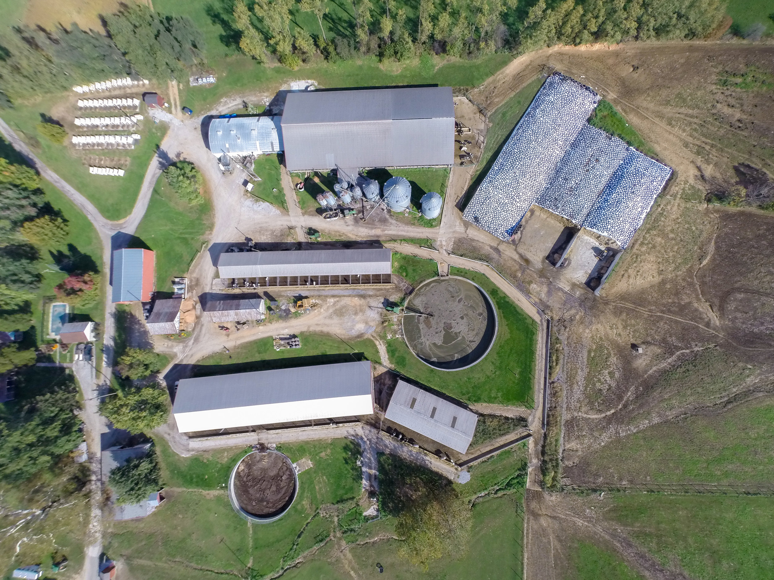 Aerial image of a Maryland dairy farm.  Image by Edwin Remsberg.
