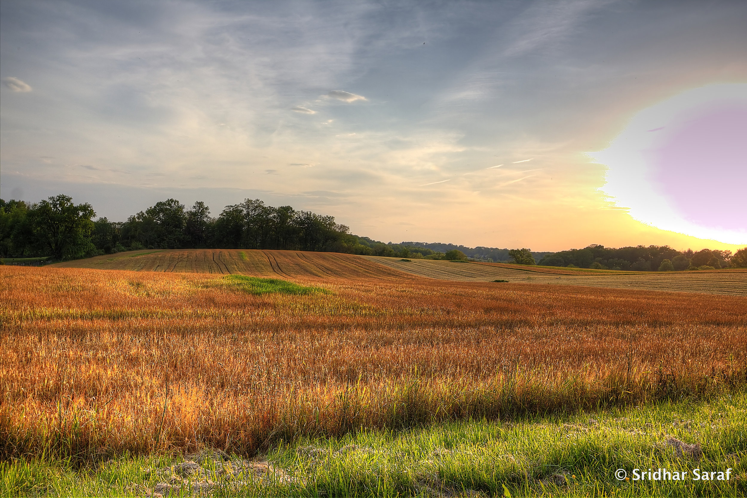 Image by Sridhar Saraf showing Maryland agricultural field.