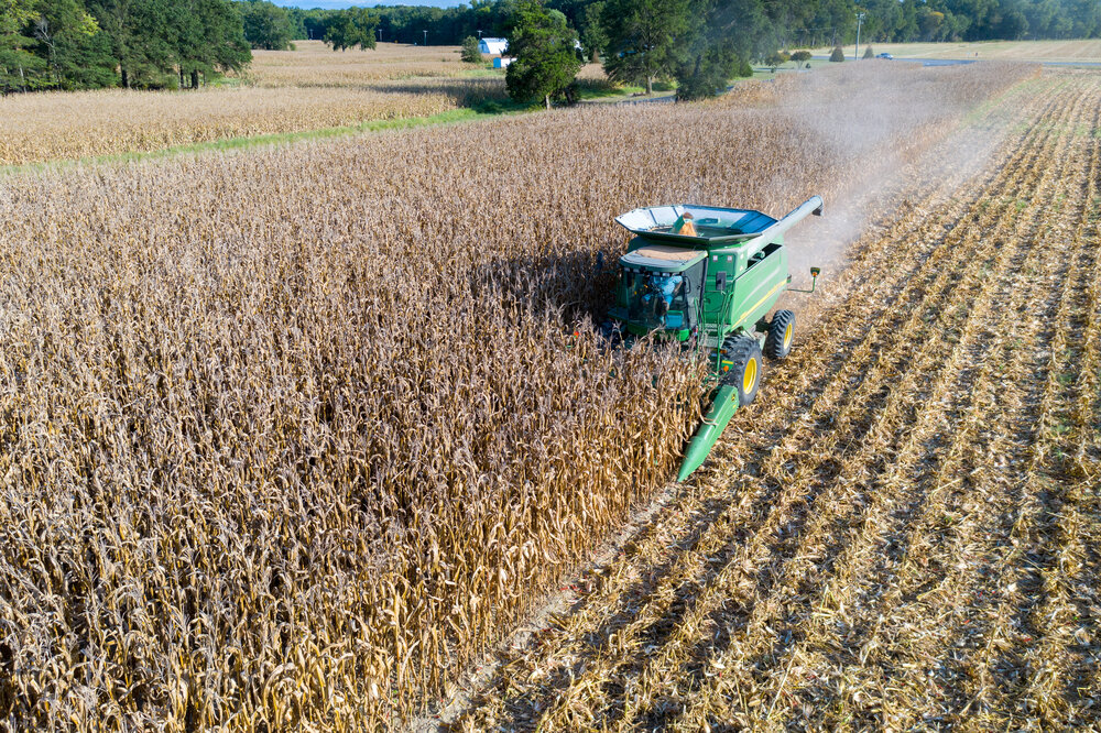 Image of corn harvest from above on the Eastern Shore by Edwin Remsberg.